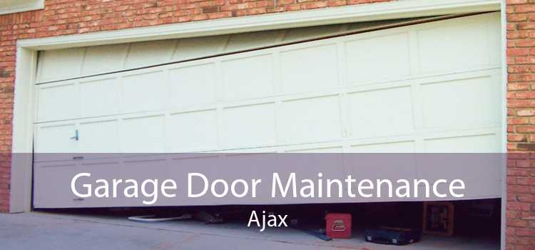 Garage Door Maintenance Ajax